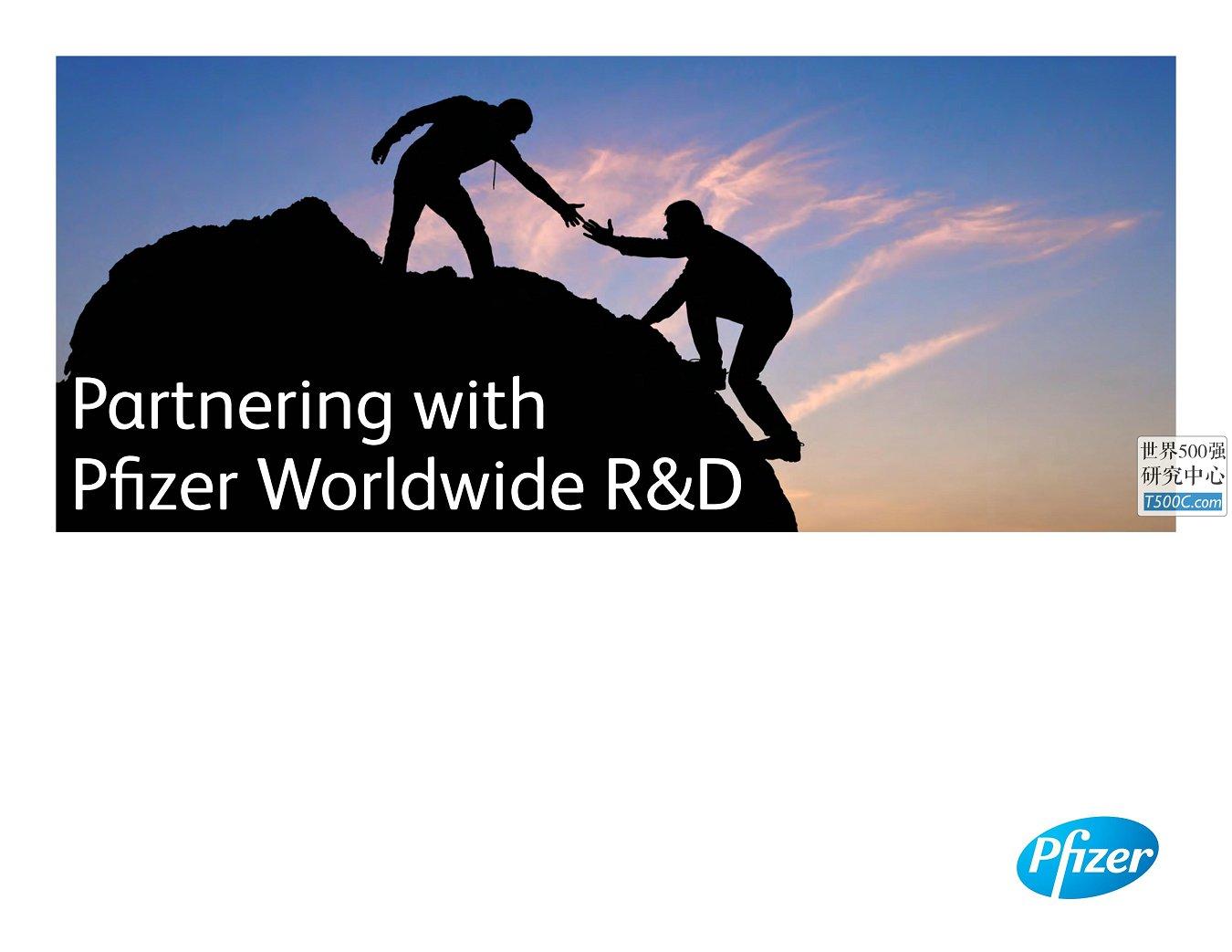 辉瑞制药Pfizer_公司宣传册Brochure_T500C.com_WRD Brochure.pdf