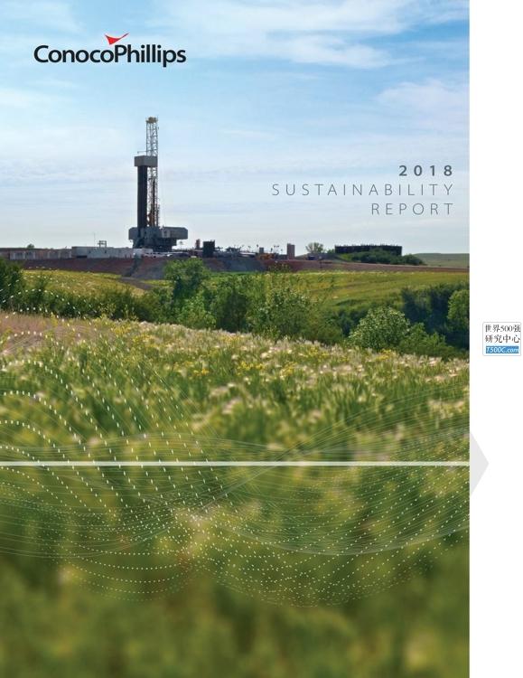 康菲石油ConocoPhillips_可持续发展报告Sustainability_2018_T500C.com