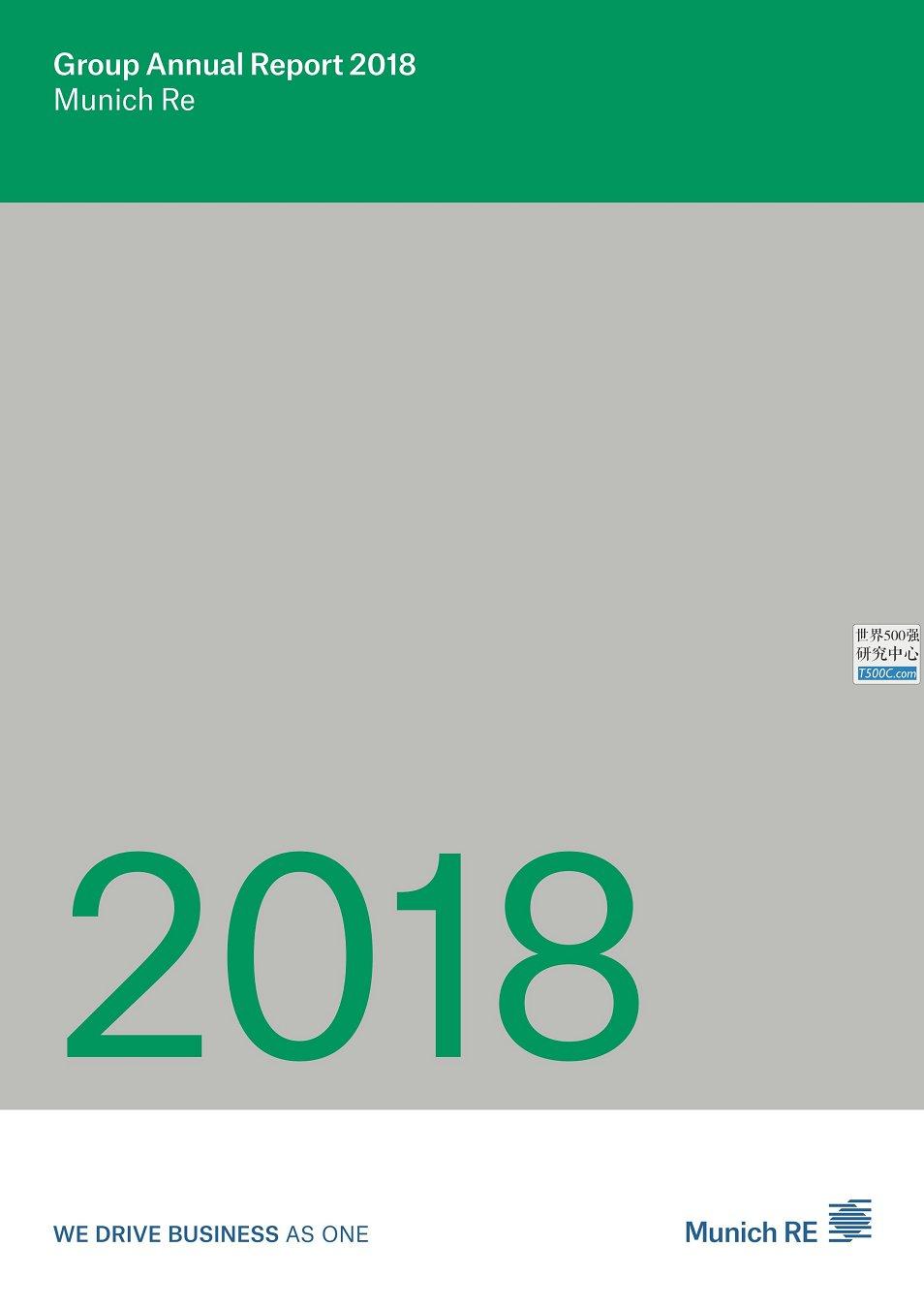 慕尼黑再保险MunichRe_年报AnnualReport_2018