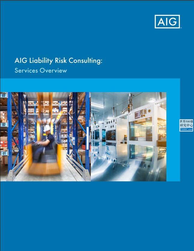 美国国际集团AIG_业务宣传册Brochure_T500C.com_risk consulting.pdf